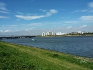 舞浜付近の旧江戸川