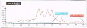 越後くびき野100kmマラソンアップダウン