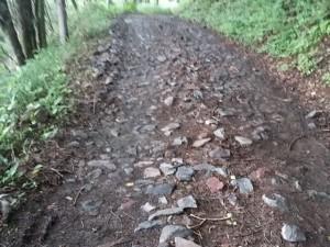 美ヶ原トレイルランアンドウォーク 石畳