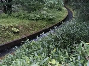 美ヶ原トレイルランアンドウォーク 水路