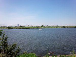 江戸川からスカイツリーを望む