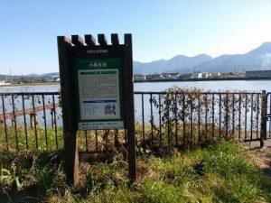 ウルトラオリエンテーリング松本城上田城 ため池