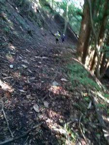 ウルトラオリエンテーリング松本城上田城 稲倉峠の下り