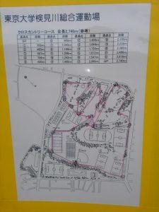 東京大学検見川運動場のクロカンコース
