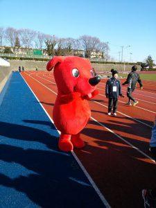 市川市民元旦マラソンに来ていた、ちーばくん