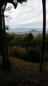 天の香具山からの眺め